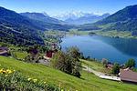 阿尔卑斯山区