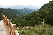 五岳寨一日游丨平时周六日发 节假日天天发