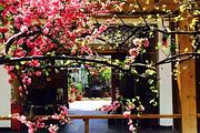 酒店近五座楼森林公园住北京云水花溪度假酒店,游桃源仙谷风景区,套餐自选