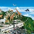 【威海必玩】西霞口神雕山·野生动物自然保护区纯玩一日游