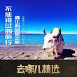 【去哪儿精选】西藏纳木错一日游【13-16小团/赠送中餐】