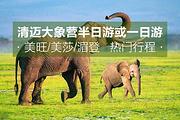 清迈 人气象营美旺/美莎/湄登大象营半日/一日游 骑大象 洗澡 表演