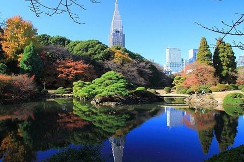 大阪+东京+京都+富士山+大阪+箱根6日5晚跟团游<银座+奥特莱斯+心斋桥>