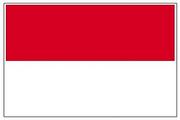 印尼旅游签(自行办理护照)
