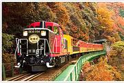 特惠抢购!京都岚山小火车 可指定车次 关西机场柜台或JR难波柜台领取
