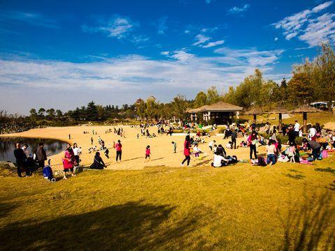 景区附近 自驾约3分钟车程入住南京银杏湖度假酒店+自选南京银杏湖乐园