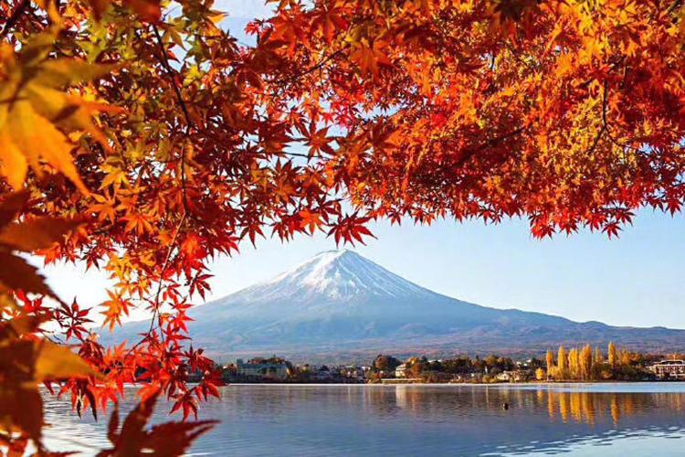 东京.大阪.京都.奈良.富士山.伊豆.迪士尼.环球影城.双温泉.滑雪北京往返