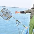 东山岛+海岛游+海钓+渔排体验半日游【皮划艇 夜捕鱼小管】