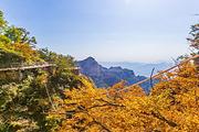 保定3天2晚之旅住涞源万悦大酒店2晚+游白石山世界地质公园,套餐自选