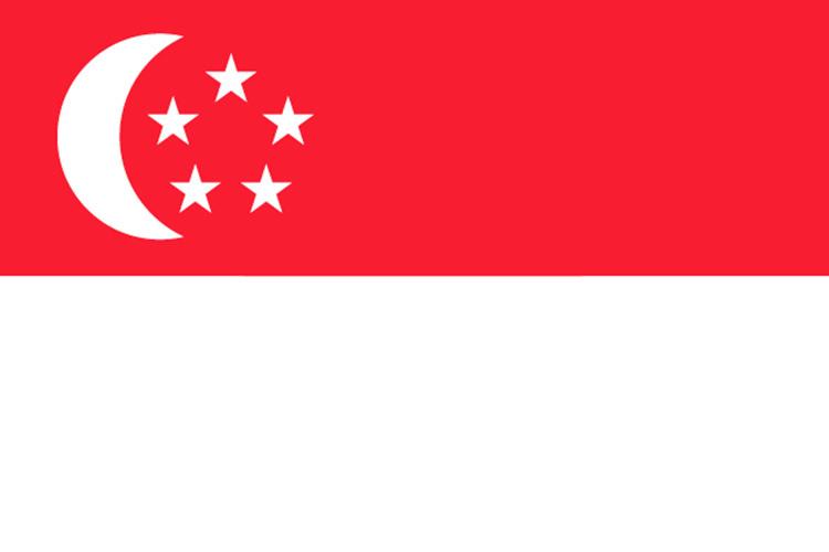 北京领区新加坡个人旅游签证/电子签/多次/7工出/可加急3工/优质旅行社