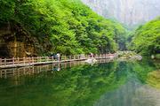 河南中青旅-云台山品质纯玩二日游 含茱萸峰玻璃栈道  含一早三正餐景区交通车