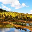 香格里拉-普达措国家公园一日游【往返车+门票+观光车】