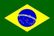 巴西旅游签证(广州领区)