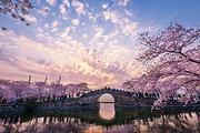 全景江南北京出发南京、扬州、无锡、苏州、上海、杭州双高纯玩5日游