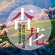 伊宁杏花沟+赛里木湖+民俗村【双卧出行,赏杏花沟、环赛湖】