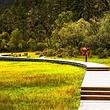 普达措国家公园+噶丹松赞林寺纯玩一日游(含接送)