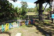 甲米 冒险乐园丛林飞跃(多套餐可选)Krabi Fun Park KBI-YUT