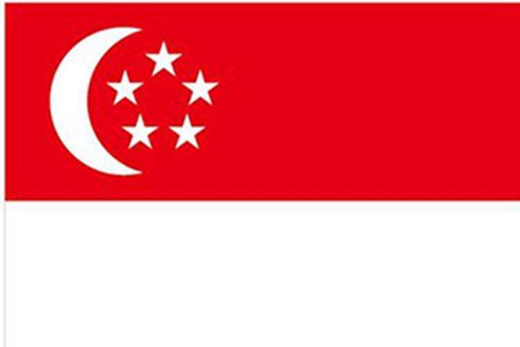 广州/上海/四川送签新加坡签证  电子签 一对一服务  出签率高 可加急