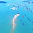 东山岛+鱼骨沙洲+海钓+渔排体验一日游半日体验