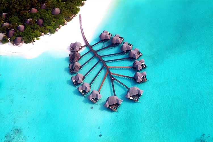<单订酒店>马尔代夫波杜希蒂岛cocobh 2沙2水 豪华五星级 带私人泳池