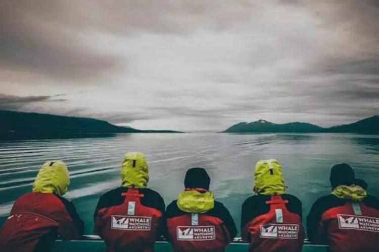 冰岛雷克雅未克起止.蓝冰洞+冰岛南岸全览 冰河湖+北极光+冰川徒步+黄金圈