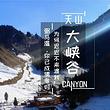 天山大峡谷+照壁山一日游【无购物·含午餐+照壁山区间车】