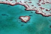 海外婚礼澳洲汉密尔顿岛心形岛一对一婚礼策划师
