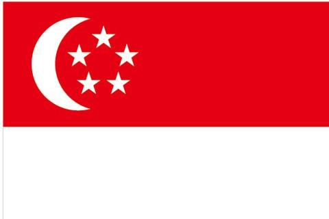北京送签 新加坡个人旅游签证  电子签/可加急  出签率高