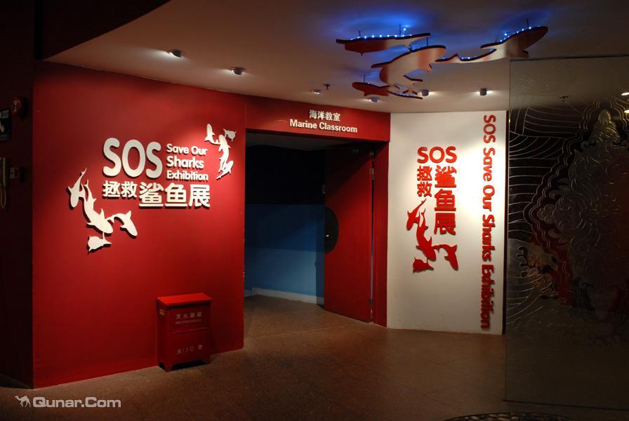 上海海洋水族馆+东方明珠地标乐园2天1晚东华大学周边高星酒店任选