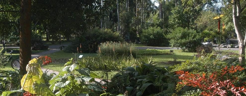 中科院西双版纳热带植物园  第1张