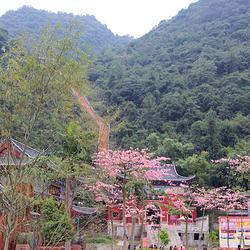 鹿峰山风景区