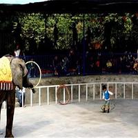 柳州动物园