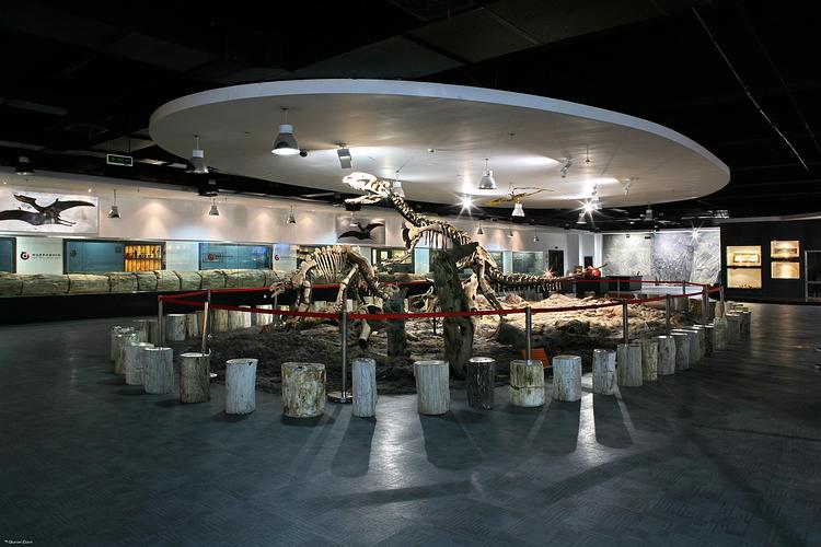 东方地质博物馆旅游