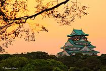 大阪 5天4晚自由行
