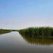 千鹤岛湿地公园