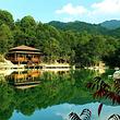 桂山风景区成人票