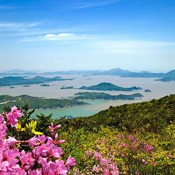 舟山桃花岛