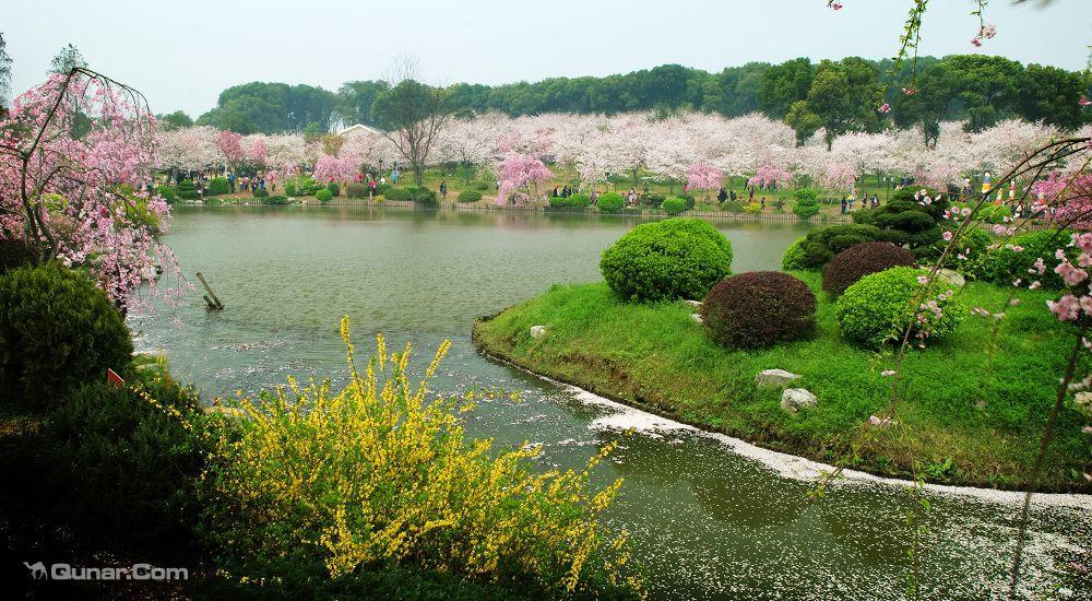 武汉大学周边2天1晚舒适型酒店任选+东湖海洋世界