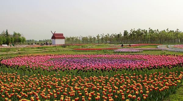 沣东农博园
