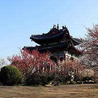 钟山风景区