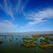 沙湖旅游区