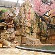 水师森林温泉度假区