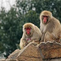 天津市动物园