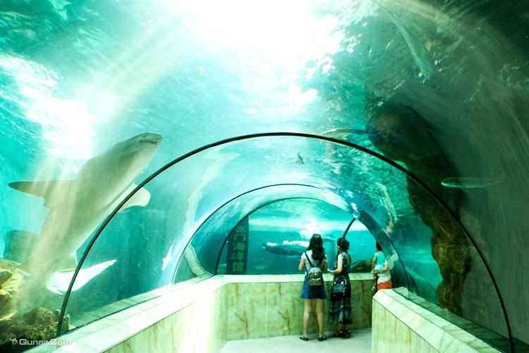 洛阳龙门海洋馆旅游