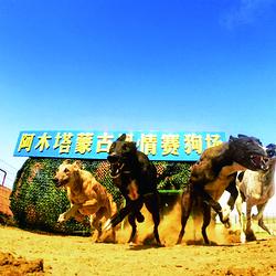 阿木塔旅游度假村