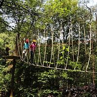 飞越丛林户外探险乐园