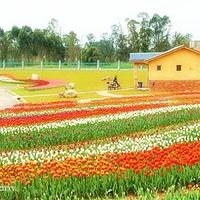 锦绣田园风景区