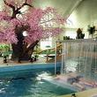 【周末】枫水湾森林温泉城温泉城成人票