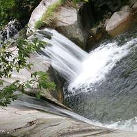 汪湖森林公园