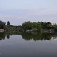 卧龙泉景区